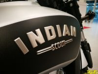 INDIAN-BOBBER-ISRAEL-4
